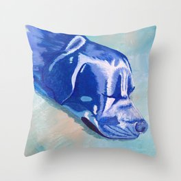Sweet Sleeper Throw Pillow