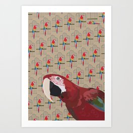 The Ara Parrot Gallery Giftshop Art Print