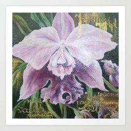 Violet orchid.  Art Print
