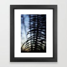 Fern at Dusk Framed Art Print