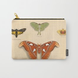 Moths on Display Carry-All Pouch