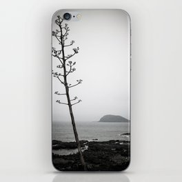 A Tree In The Fog , A Small Island In The Distance iPhone Skin