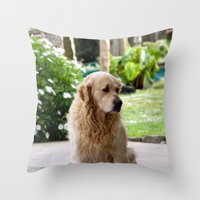 lucas david Throw Pillows featuring Lucas by Rafael Andres Badell Grau