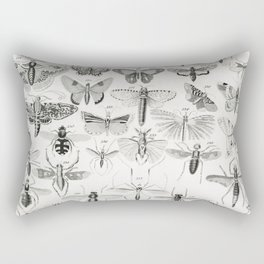 Entomology from A history of the earth and animated nature (1820) by Oliver Goldsmith (1730-1774) Rectangular Pillow