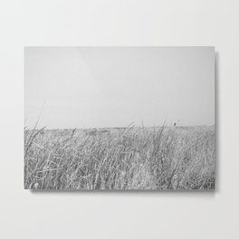 BLUE MOON II (B+W) / Alviso, CA Metal Print