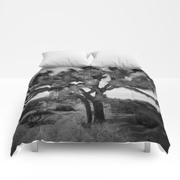 Joshua Tree National Park Comforters