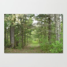 Through the Woods Canvas Print