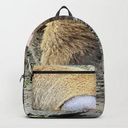 Monkey Butt Backpack