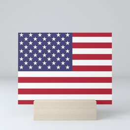 Flag of USA, 10:19 scale prints Mini Art Print
