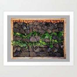 Coal and Leaves 01 Art Print