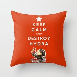 Keep Calm and Destroy HYDRA Throw Pillow