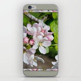 APPLE BLOSSOM iPhone Skin
