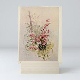 Flower Calopogon Grass pink limodorum tuberosum20 Mini Art Print