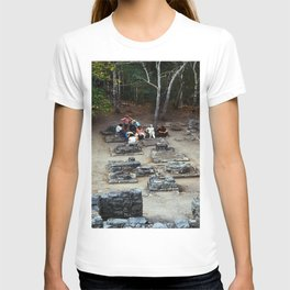 Coba (Maya Ruins) T-shirt