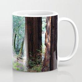 Muir Woods 2 Coffee Mug