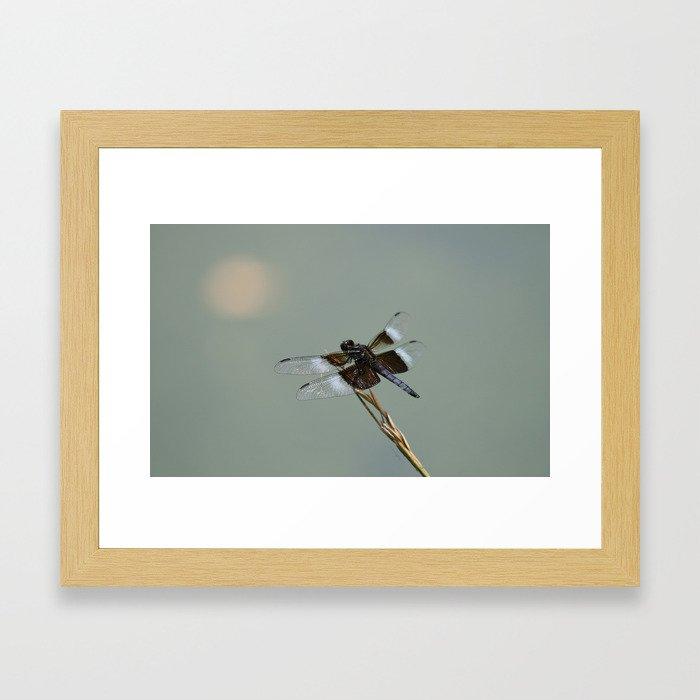 Hazy Afternoon Framed Art Print
