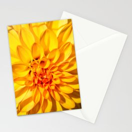 Yellow Macro Flower Stationery Cards