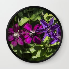 Clematis Stars Wall Clock