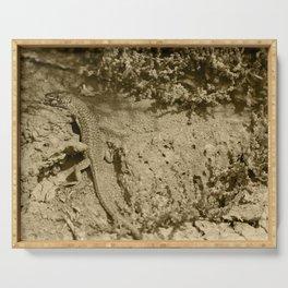 Haria Lizard Lobos Tint Serving Tray