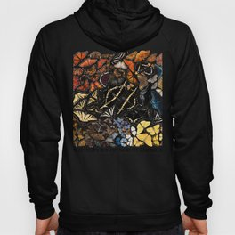 Butterflies of North America Hoody