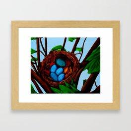 Robin Blue Framed Art Print