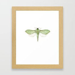 Pepe Tuna / Puriri Moth 2016 Framed Art Print