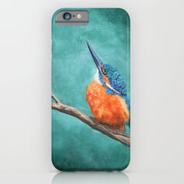 A Watchful Eye by Teresa Thompson iPhone Case