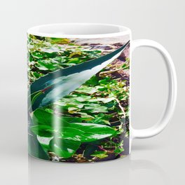 Aloe Vera at the top of Mount Monserrate in Bogota, Colombia Coffee Mug
