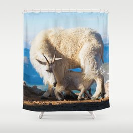 Mountain Goats Nanny And Kid Shower Curtain
