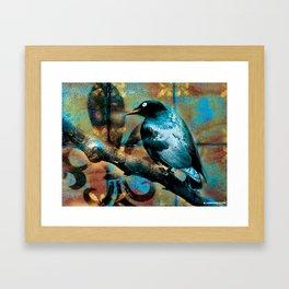 Fleur De Bluebird Framed Art Print