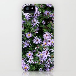 Fall Asters iPhone Case