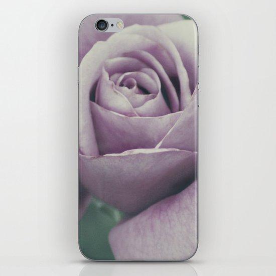 Rose in violet iPhone & iPod Skin