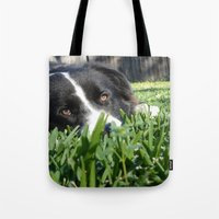 border collie Tote Bags featuring Thoughtful Border Collie by elledeegee