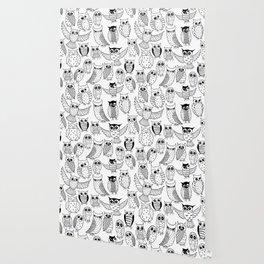Funny owls Wallpaper