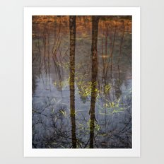 Nature Reflects To Me Art Print