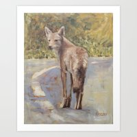 Coyote on Path Art Print