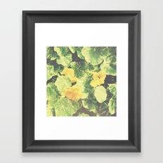 Emerald Summer. Framed Art Print