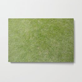 Lawn Metal Print