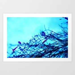 Morning Breez Art Print
