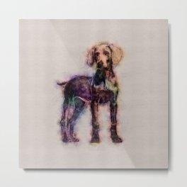 Weimaraner puppy sketch Metal Print