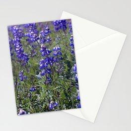 Indigo Wilds Stationery Cards