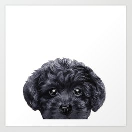 Black toy poodle Dog illustration original painting print Art Print