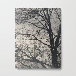 The Barren Tree Metal Print