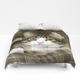 Caught Comforters
