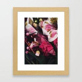 Seja II Framed Art Print