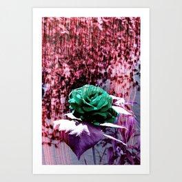 Somewhere 1 Art Print