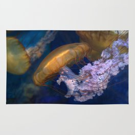 Pacific Sea Nettles Jellies Rug