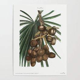 VIntage Palmer Poster Poster
