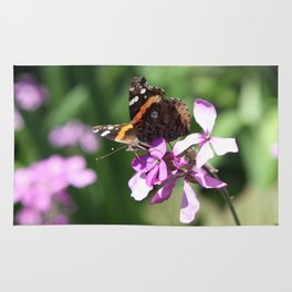 Butterfly and Phlox Rug