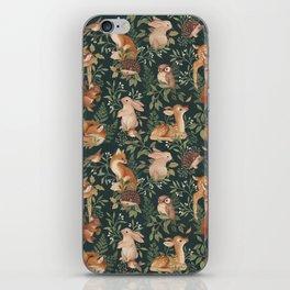 Nightfall Wonders iPhone Skin